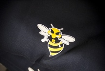 Gear / Got your Yellowjacket gear? / by Rochester Community and Technical College
