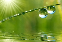 Ways of Water / by Barbara Ingold
