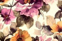 Patterns & wallpaper / by Roverto Romero