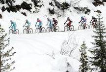 Giro d'Italia 2013 / Girotondo