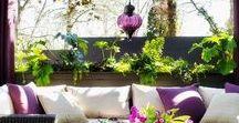 Terrazas, Balcones & Jardines