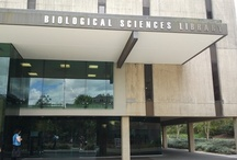 Biological Sciences Library UQ St Lucia