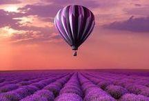 Moodboard Purple
