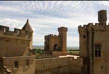 Navarra, el viejo Reino / Todo tiene cabida en esta preciosa tierra, desde los bosques de hayas y abetos de la Selva Irati hasta el desierto de las Bardenas, castillos y palacios de Reyes y pueblos medievales.
