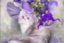 PURPLE PASSION / There are two colors in my world...purple and black. Purple makes me feel good and black makes me look slimmer than I really am....hence, my favorites. Happy pinning <\:) / by Lynn Case