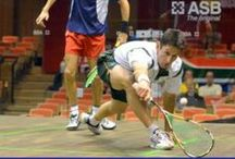 Squash and Racket Heroes