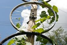Gardening & Permaculture / gardening, permaculture, seed saving, composting and the environment