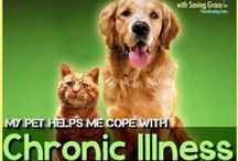 Service  Animals and Therapy Pets / Service animal information and how pets, in general, help those living with chronic illness.  #chronicillness #invisibleillness #undiagnosedillness #undiagnosedwarrior