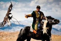 Mongolia / Mountains, ponies and ger life. One of my favourite countries ever visited.