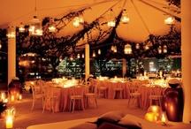 My Perfect Wedding / by Jennifer Noelle