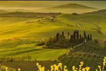Paesaggi/Landscapes