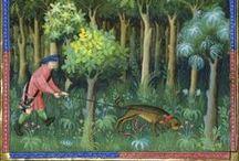 Iluminacje: Livre de Chasse / Miniatury z Livre de Chasse Gastona Phoebusa.