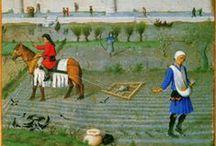 Iluminacje: chłopi / Chłopi i prace polowe na średniowiecznych miniaturach.