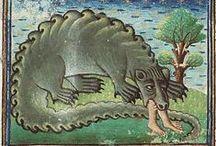 Iluminacje: bestiarium / Średniowieczne zwierzęta i potwory.