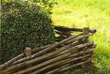 plot z vzbových větví