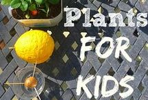 Gardening with Kids / Some tips and interesting gardening tips!