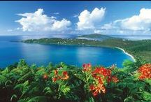 Caribbean Islands / Cruising to the Islands is like having many vacations in one; the cruise ship is in itself a destination and then the Caribbean Islands are mini vacations!  Each one is different and, all absolutely amazing!  Most people end up coming back to their favorite Island for a later vacation.    / by Caribbean Cruises Travel Agent