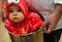 Halloween / Halloween, Holidays, Decorations, Pumpkins, Kid Costumes