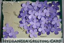 Hydrangeaceae:)
