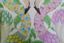 Millie Marotta / Colouring in