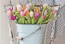 * Spring home decor *