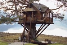 Treehouses / The best place to live!