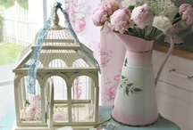 Decor: Bird Cages & House