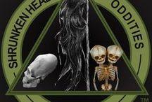 Shrunken Heads, Oddities & The Macabre. www.FineOddities.com / We Buy & Sell Shrunken Heads, Oddities & The Macabre https://www.facebook.com/RealShrunkenHeads/