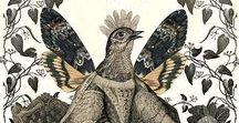 illustration and collage / Illustration, collage and folk art