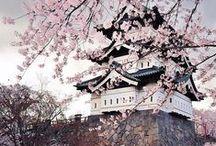 Spring Getaways / by HotelPlanner