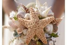 Beach & Seashell Wedding Decor / Oh so many ideas for elegant and or fun beach themed weddings. From invitations and place cards to centerpieces and party favors, check out this board or shop at http://www.caseashells.com/beach-wedding-seashells. / by California Seashell Company