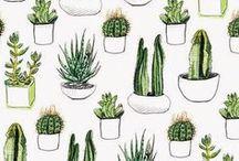 Pattern / Bold prints and patterns