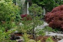 Portland Oregon Landscaping Ideas / Live in Portland? Need ideas for your landscape? These blog posts written by designer Ben Bowen of Ross NW Watergardens are just what you need!
