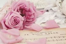 Dusty Rose / http://www.judithdcollins.com/