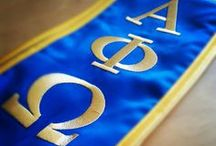 Senior Celebration / For the soon-to-be graduate!  ♦ Graduation Caps ♦ Stoles ♦ Senior Send-Off Ideas / by Alpha Phi Omega Region 5