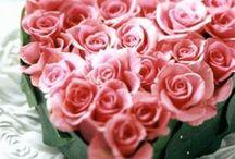 Valentine!!
