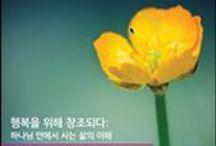 한국어 책 Reading Program Titles (Books in Korean)