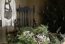 Home Decor that I love / by Deborah Craig Shields