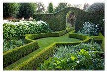 Landscape element....