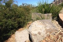 Our Work / Sustainable and permaculture landscapes designed and installed by Regenerative Designs Australia.