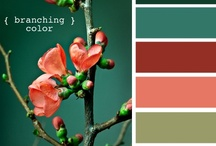 Color of the life :)