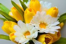 flores / by Luz Soto