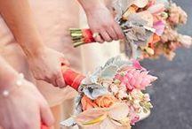 Wedding: peach/coral