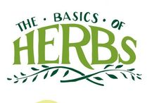 Herbs...not just for cooking / by Deb Alles