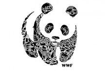 World Wildlife Fund / by mariah c.