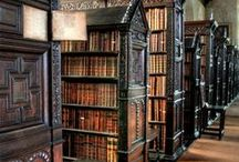 """Beautiful Libraries / Austerity, both economic and aesthetic, threaten our public libraries.  Employers seek to """"de-clutter"""" our libraries of books, bookshelves, book trucks, and staff in equal measures.  Enjoy these beautiful images."""