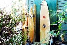 skate / surf / snowboard etc.