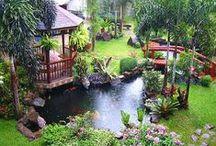Garden, Patio & Pool
