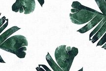 Wallpapers / Wallpapers IPhone Cellphones