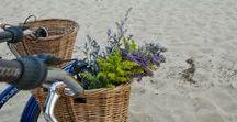 Belle Ile - Collection Printemps-Eté 2017 / Un esprit bord de mer mixé avec un côté champêtre par du vichy et de la dentelle, à découvrir sur www.breal.net